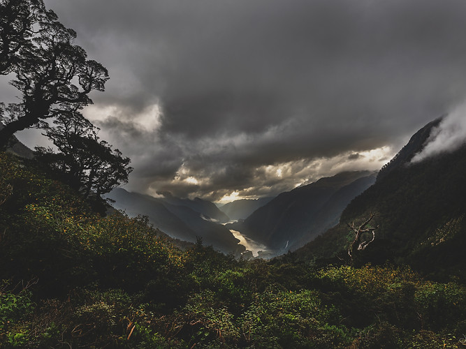 Doubtful sound 3