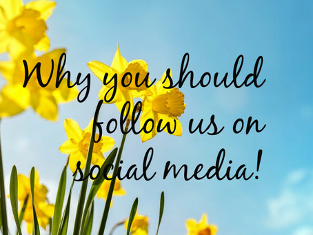 Are you following us?