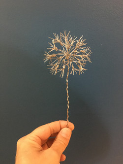 Miniature dandelion wish