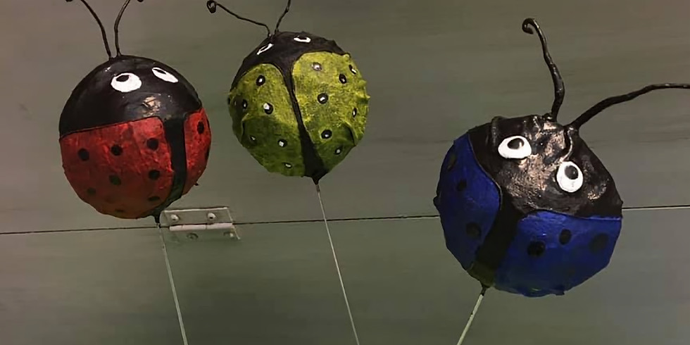 Paverpol Ladybug Class