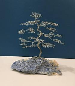 Bonsai Tree on a Blue Kyanite base