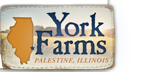 york farms rough.png