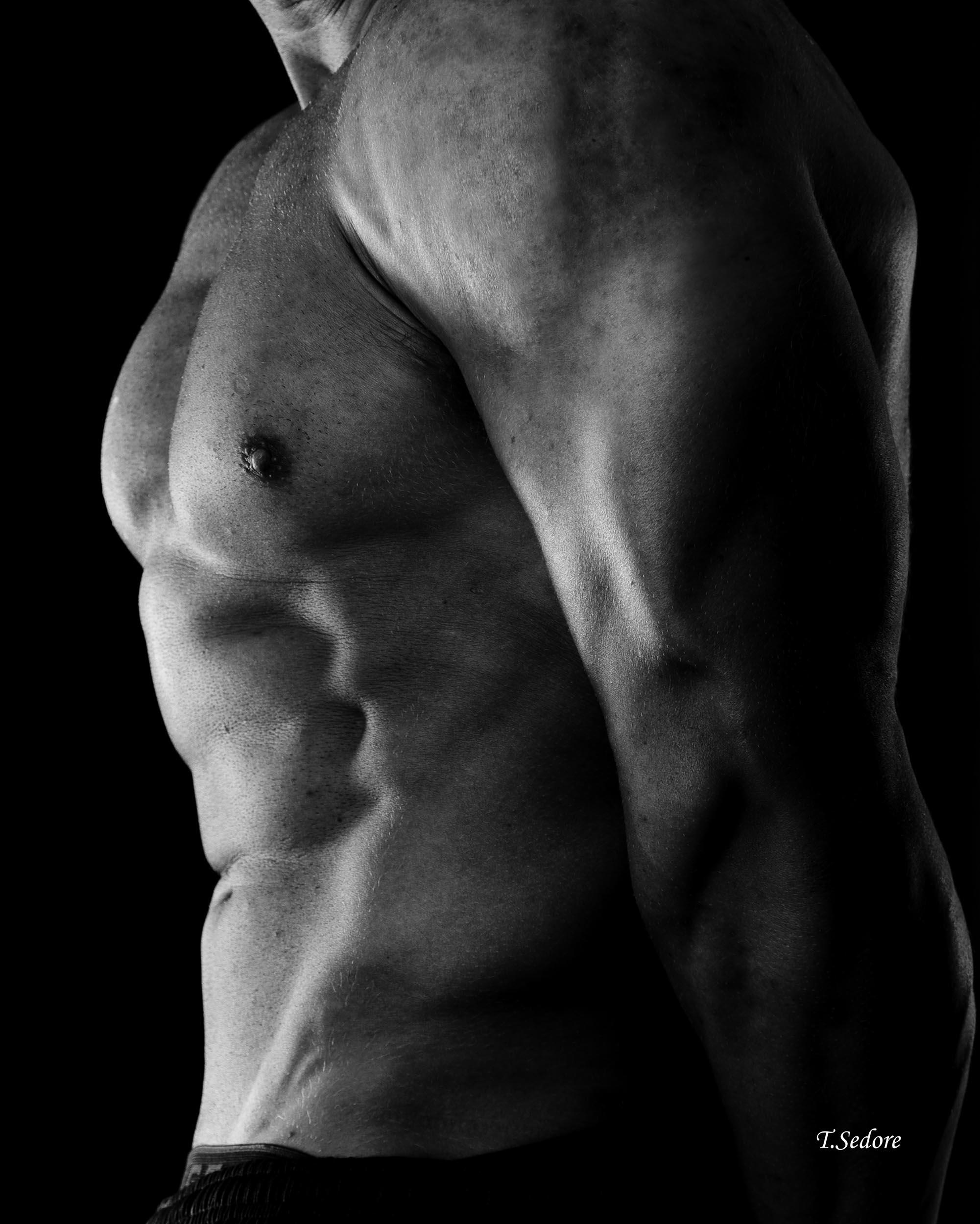Fitness Portraits