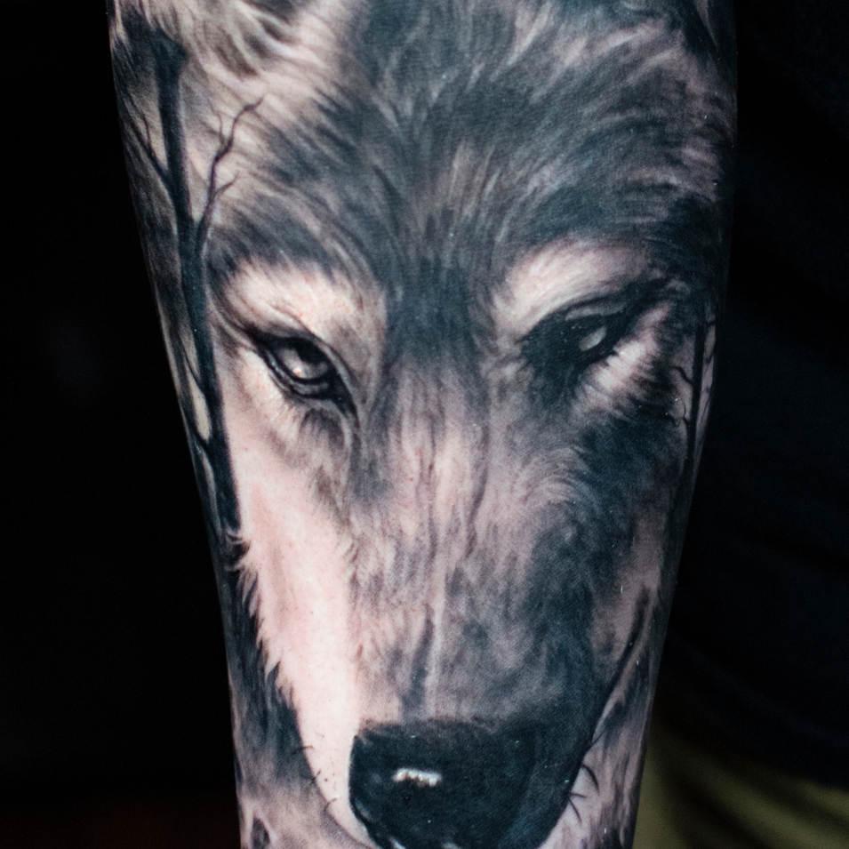 kevinwolf.jpg
