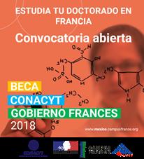 Ofertan becas Conacyt - Gobierno Francés 2018