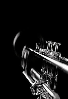 Black and White Trumpet for Jazz in the City 2019