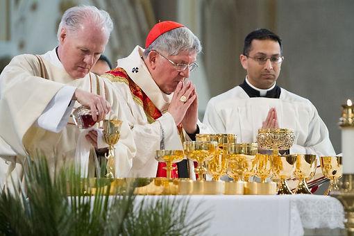 Cardinal Collins.jpg