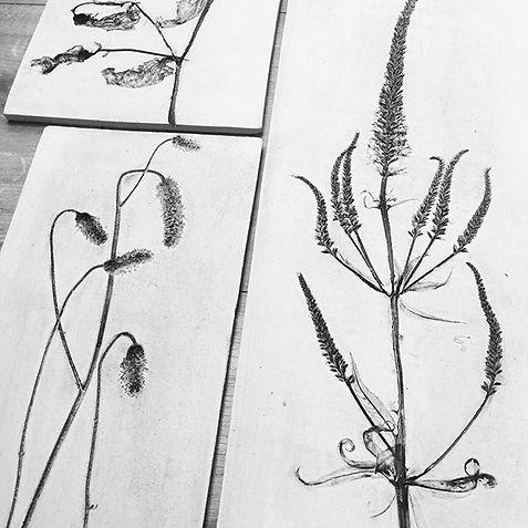 Garden plants preserved, Garden style