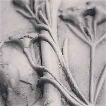 Plaster casts from my coastal botanicals collected from the beautiful Polzeath.....jpg