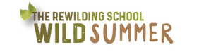 RWScamp-littlelogo.png