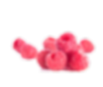 RWShomeschool-berries.png