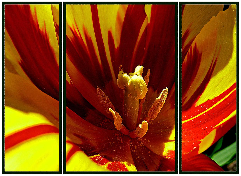 Triptychon 012
