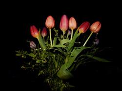 Blüten 001