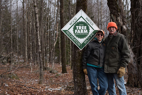 1 Forest Landowners whose trees become p
