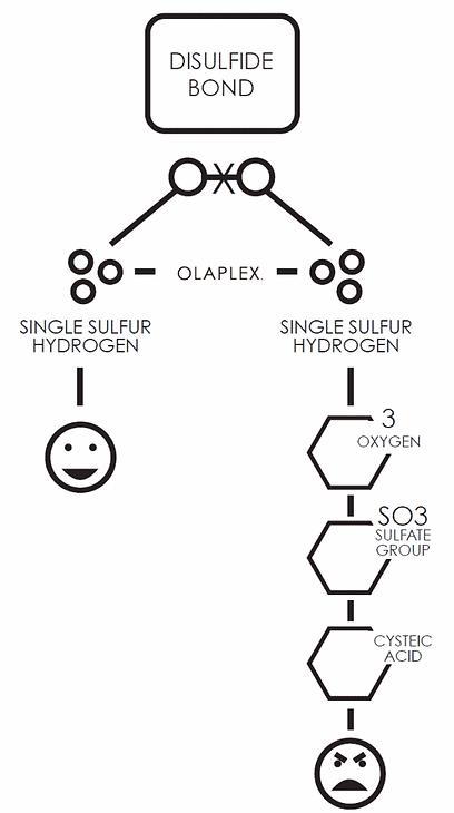 broken-disulfide-bonds-572x1024.png