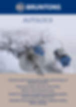 Bruntons Propellers Autolock Brochure