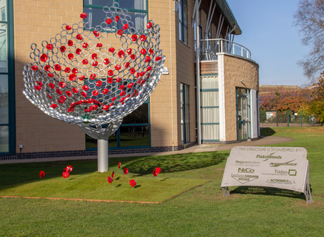 Tridan Engineering helps commemorate the 100th anniversary of the end of WWI
