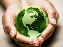 Environmental Audit 14001