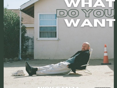 """""""What Do You Want"""" - Nick Sanza  Review"""