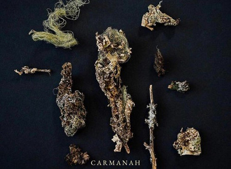 """Bang Bang"" - Carmanah 