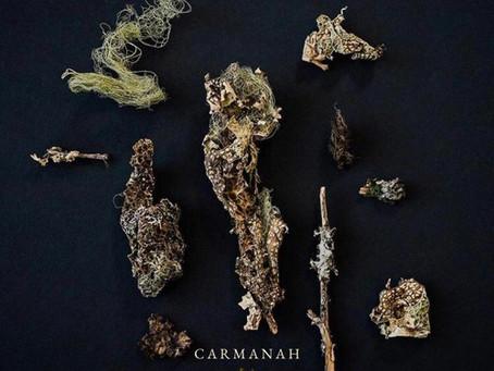"""""""Bang Bang"""" - Carmanah  Review"""