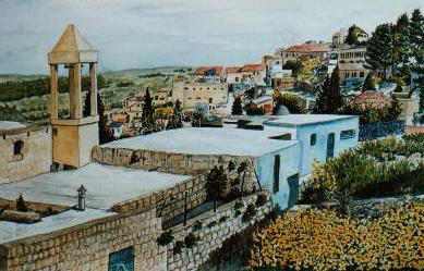 Overview of Safed