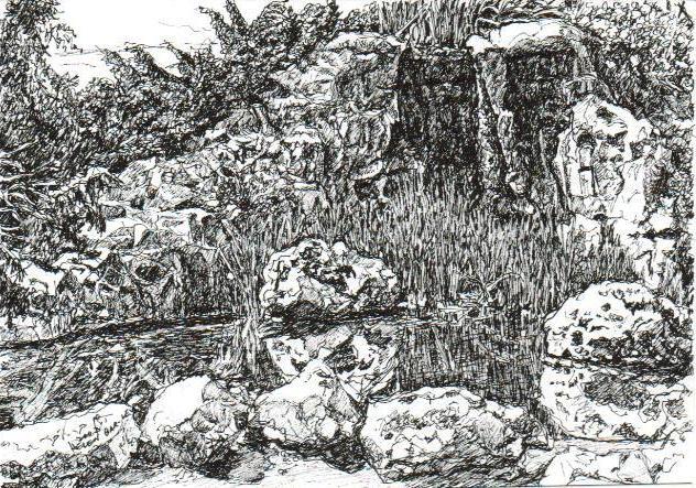 Rocks in Botanical Gardens