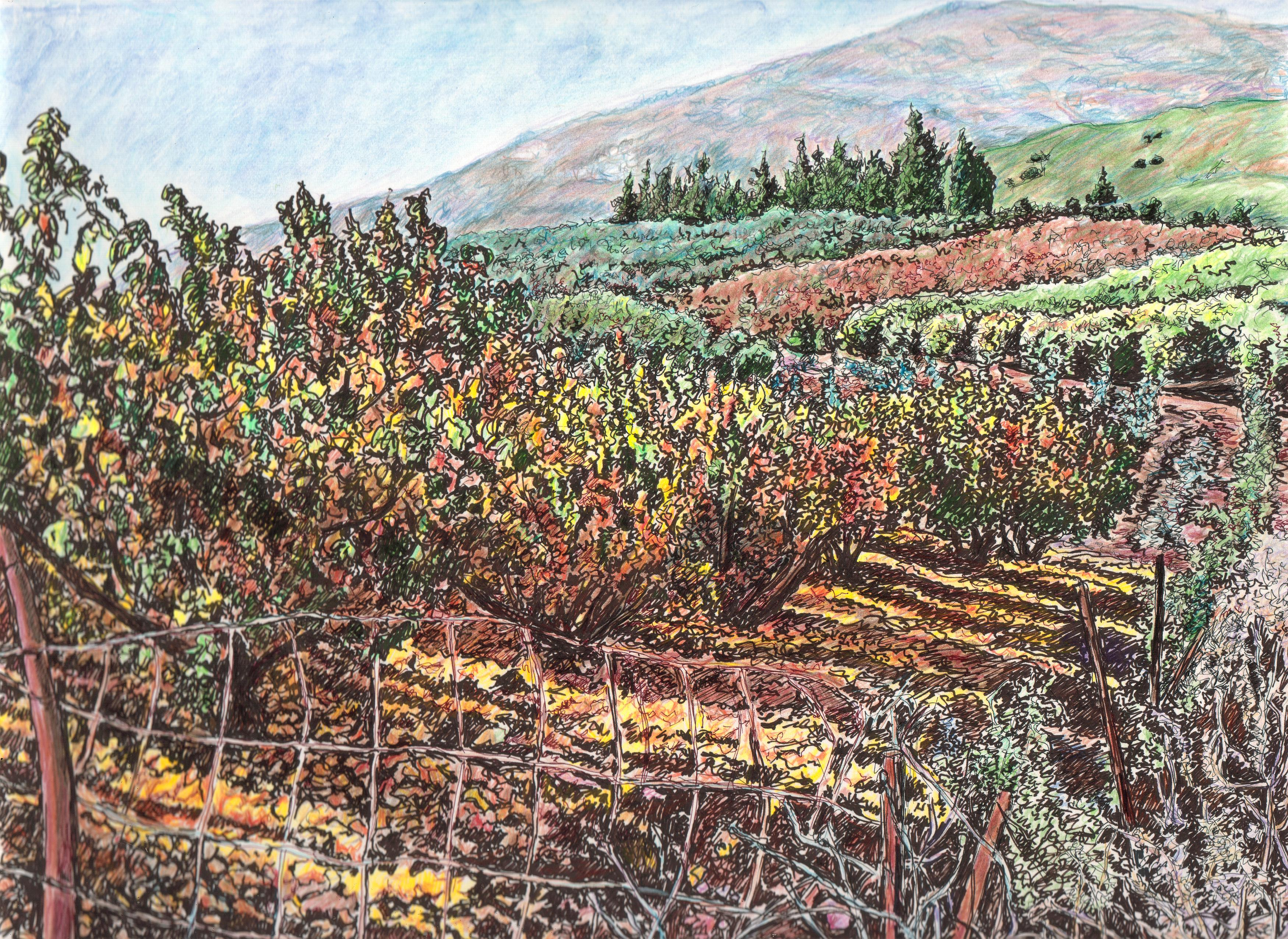 Autumn in the orchards in Metulla
