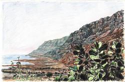 Dead sea with Sodom apple tree
