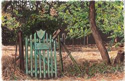 Gate in Michmoret