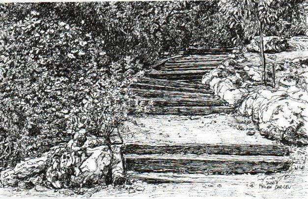 Steps in Botanical gardens