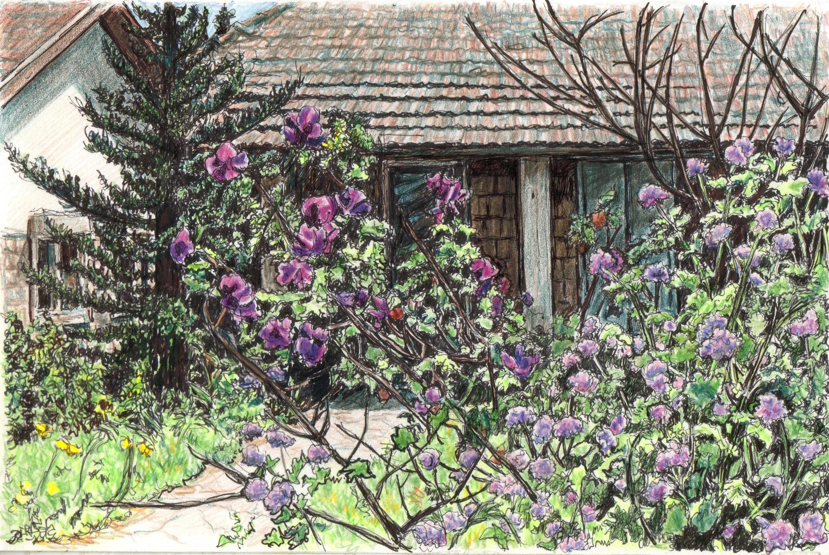 House in Metulla with flowers