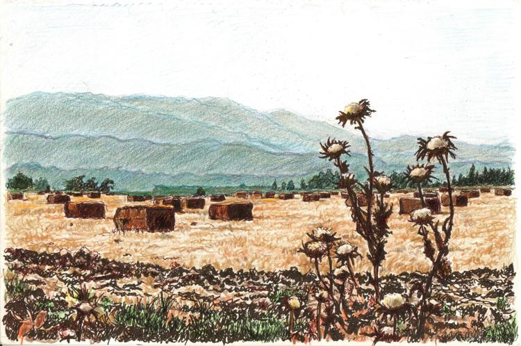 Haystacks in Galilee