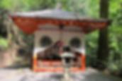 Mount Kurama in Japan with Reiki Vitality