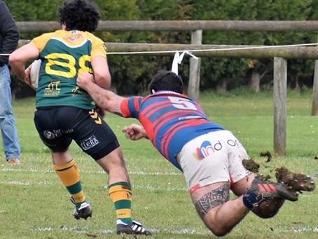 FIN DE SEMANA: citas ineludibles para un buen rugbier del Calzada rugby.