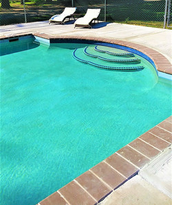 Newly Renovated Swimming Pool