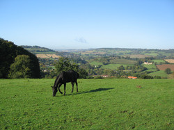 The view from Grove Barn_