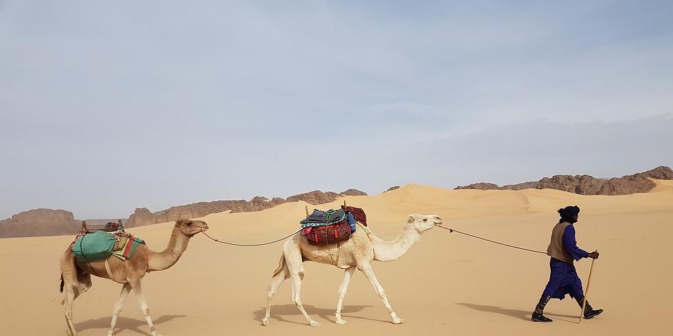 Sabbatical in der Sahara