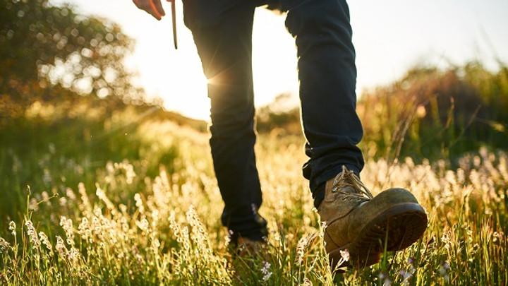 MÄNNER-WORKSHOP «Sterben für Anfänger – wie Du als Mann lebendiger lebst»