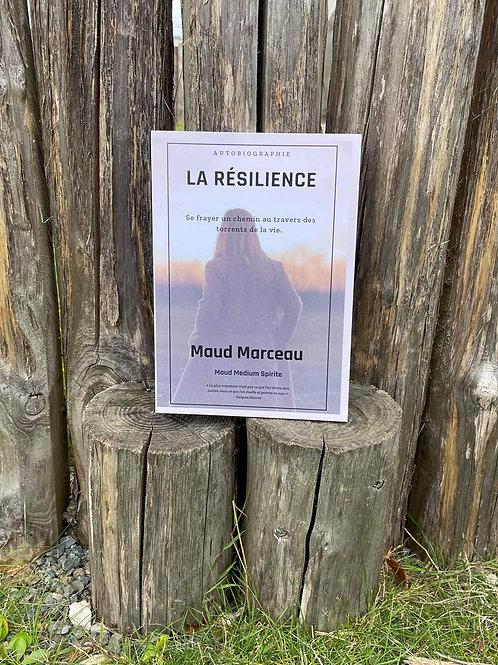 Livre : La Résilience