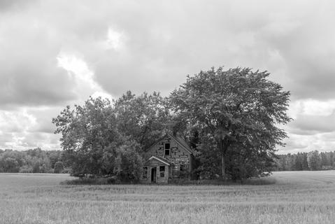 This Old House (2020)
