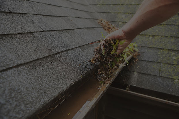 """<img src=""""guttercleaningpng"""" alt=""""cleaning leaves from gutters on house"""">"""