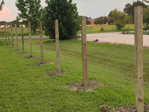 Sugar Land Fence Repairs Vs Fence Fence Replacement