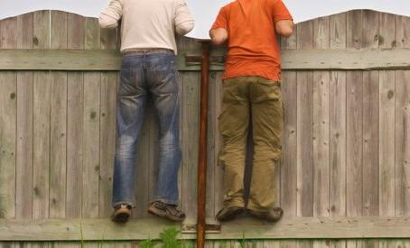 Friendly Fence Etiquette