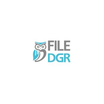 FileDgr.png