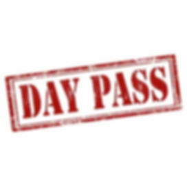 day%20pass%20image_edited.jpg