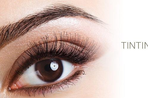 Eyebrow Color Tint/Dye
