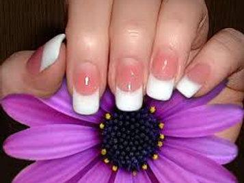 Solar Pink & White Rebase