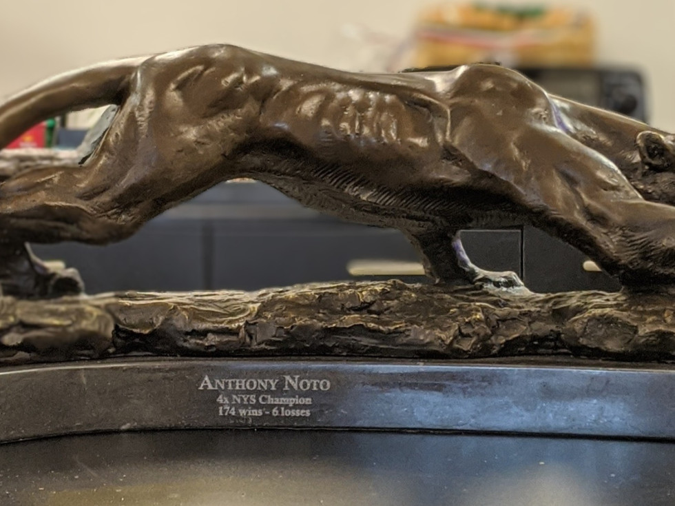 Engraved Wrestling Trophy