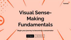 Virtual Visual SenseMaking